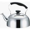 BK-S313 Чайник металлический