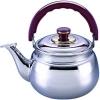 BK-S385M Чайник металлический